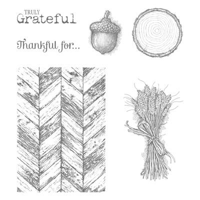 Set de tampon Vraiment Grateful stampin'up