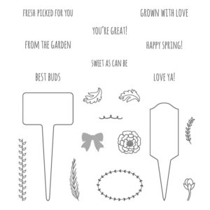 stampin'up set de tampon from the garden