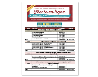 th_onlineex_flyer_demo_nov2116_fr